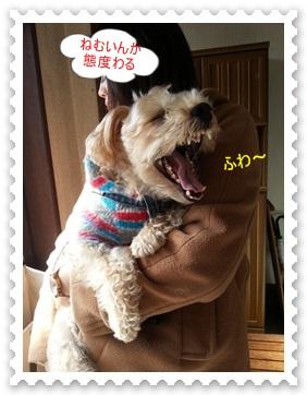 kotarou2_201311152239096f2.jpg