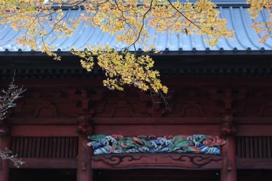 妙法寺19