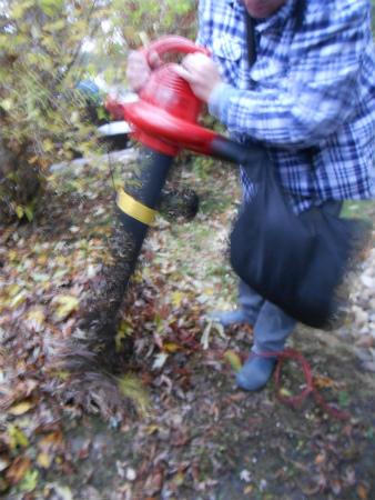 落ち葉掃除機2