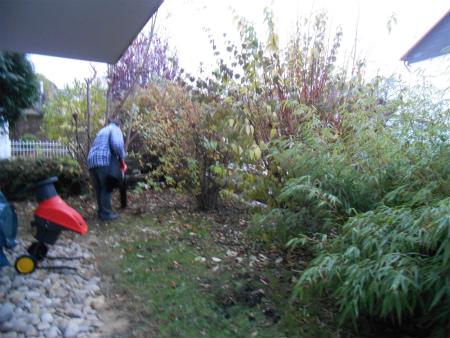 冬の庭仕事3