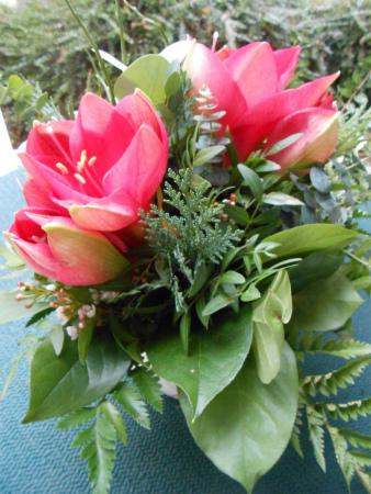 アマリリスの花束2