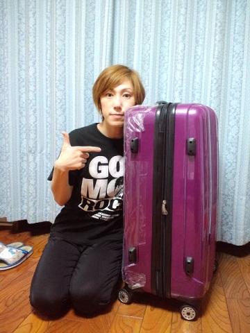 スーツケース 横