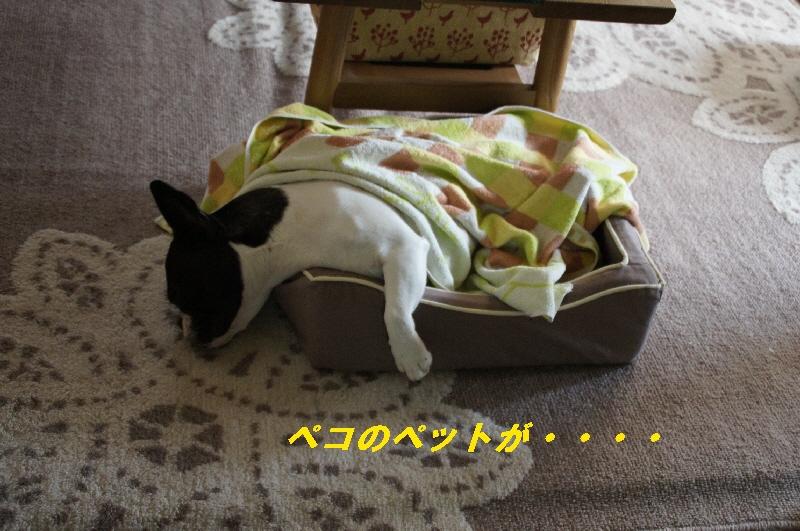 003_20100930184150.jpg