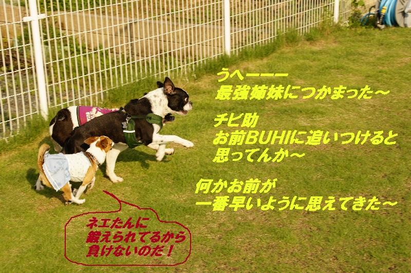 10_20100712130303.jpg