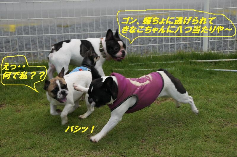 11_20100823220414.jpg
