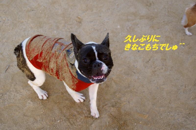 12_20100817215134.jpg