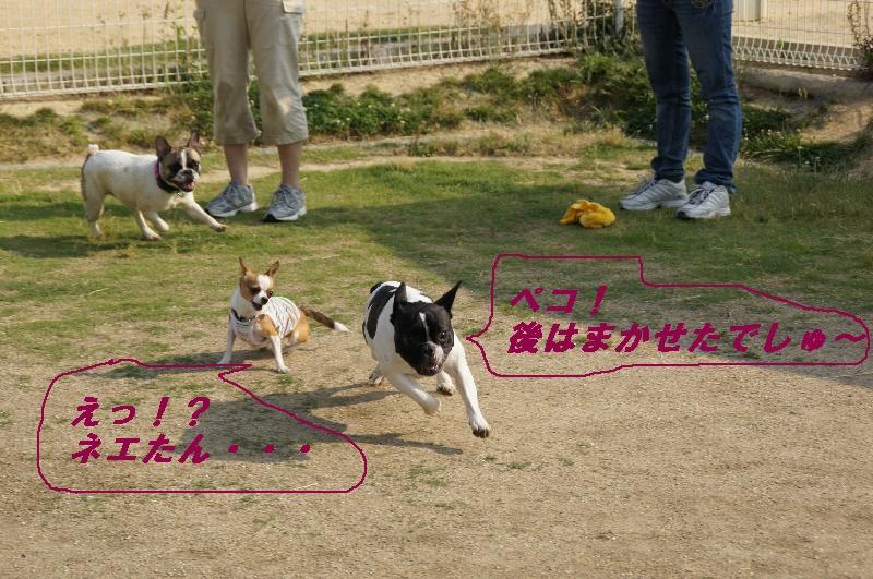 13_20100613230843.jpg