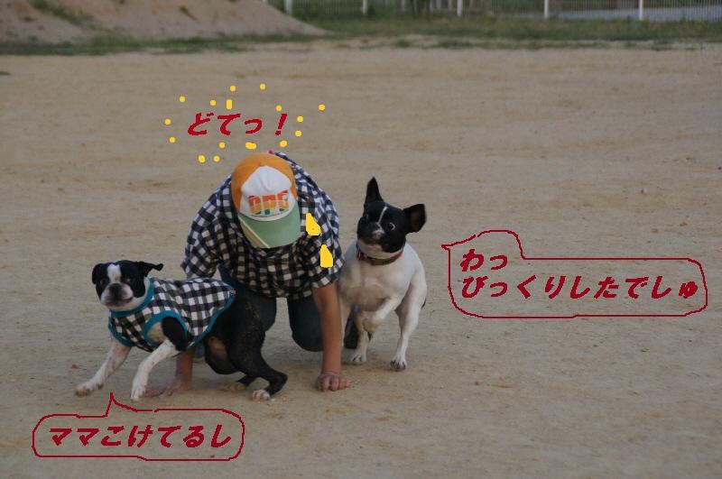 17_20100920214159.jpg