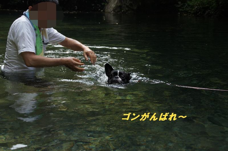19_20100822064442.jpg
