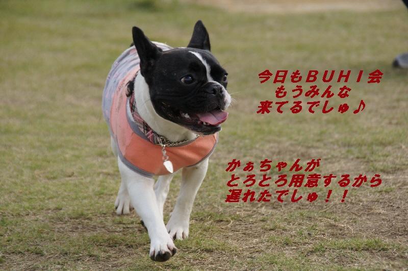 1_20101024210715.jpg