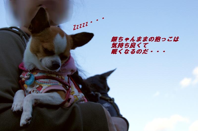 24_20101012180730.jpg