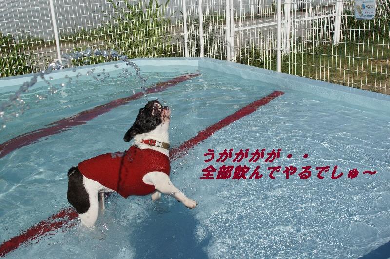 2_20100720222257.jpg