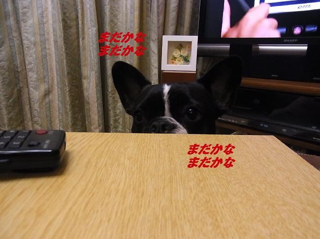 2_20101125132515.jpg