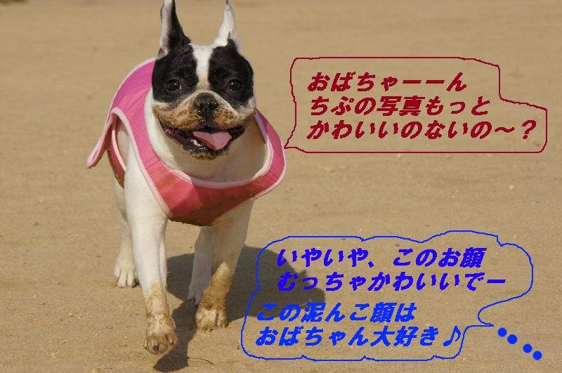 5_20100601200846.jpg