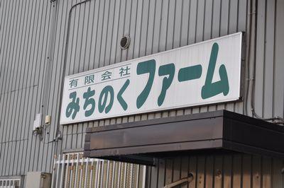 2010.10.6 巾着田 16
