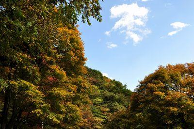 2010.11.3 御岳山 082