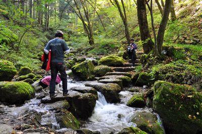 2010.11.3 御岳山 064