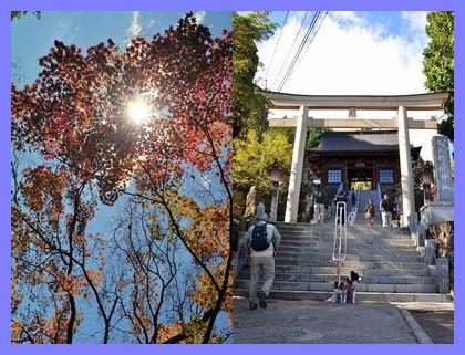 2010.11.3 御岳山 1