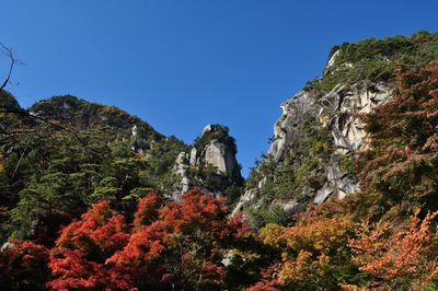 2010.11.11 昇仙峡 042