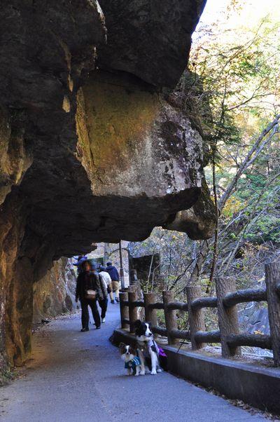 2010.11.11 昇仙峡 051