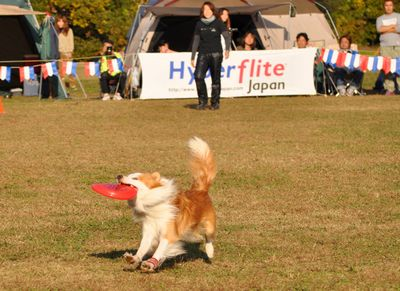 2010.11.20 HFJ ロゼル