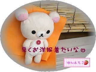 ちこちゃん日記★95★ちこちゃんの休息-3
