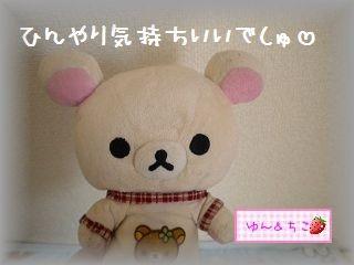 ちこちゃん日記 ★98★ひんやりしましゅ-6