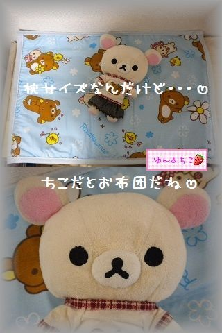 ちこちゃん日記 ★98★ひんやりしましゅ-5