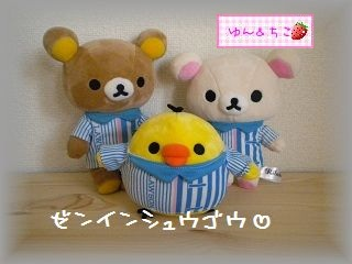 ローソン限定★キイロイトリ着せ替えぬいぐるみ★-10