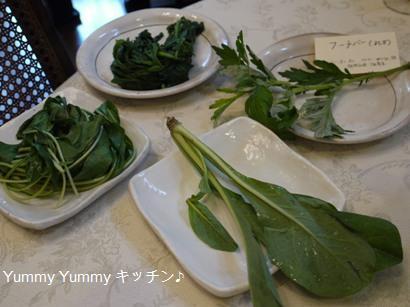 沖縄野菜1