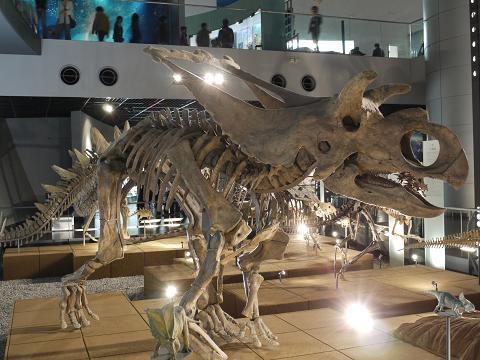 恐竜たち②