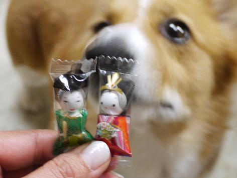 お雛菓子3.3