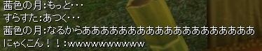 2012-3-8 4_35_25