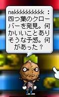 Maple110122_235140.jpg