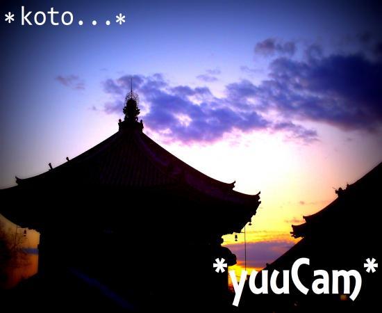 20114070194_convert_20120716200019.jpg