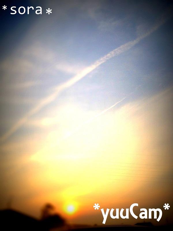 IMG20120615endtiltshift.jpg