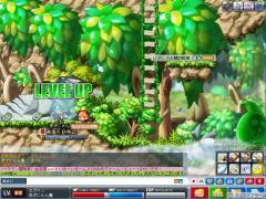 Maple100805_214409.jpg
