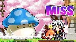 Maple111230_093258.jpg
