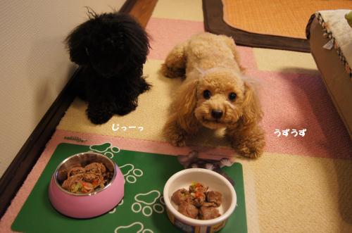 20110104yuzukosyo1k.jpg