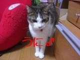 CIMG6224.jpg