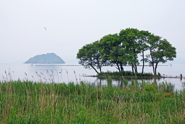 240603竹生島10