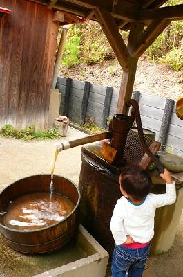 サツキとメイの家 井戸