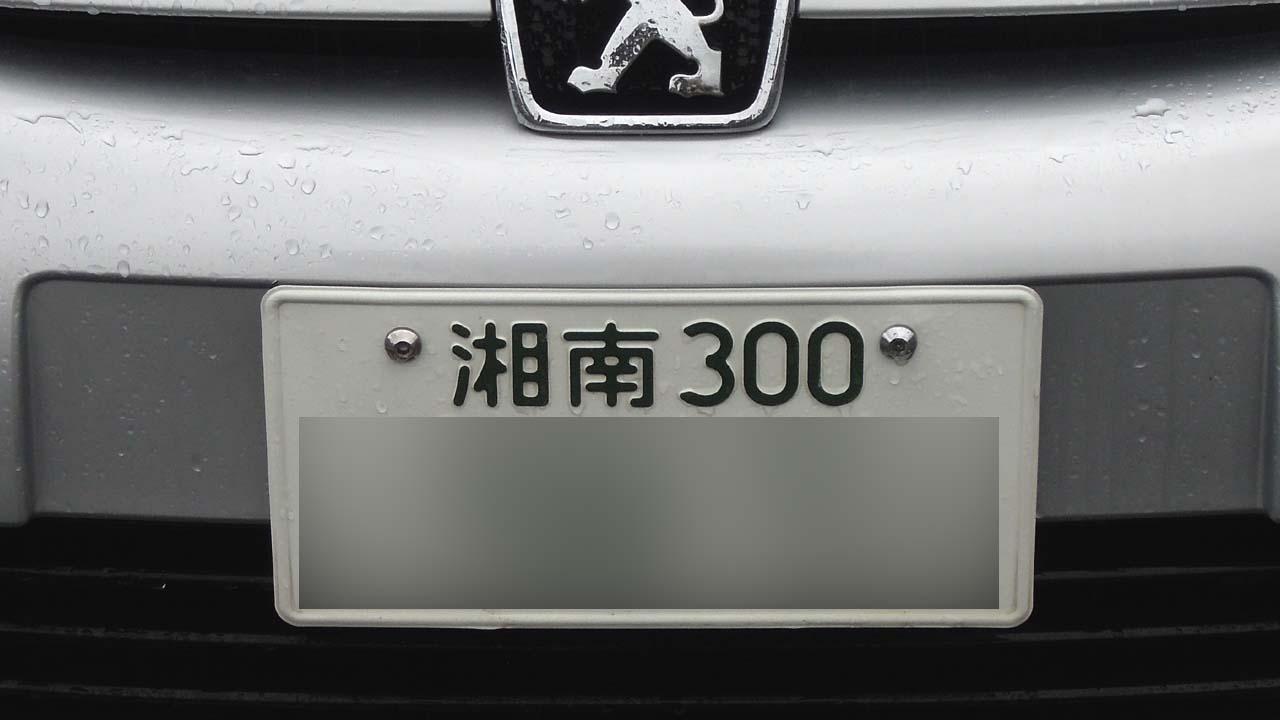 peug307-02.jpg