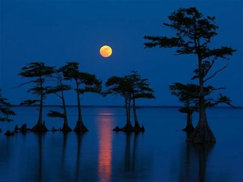 blue-moon-august-2012_58820_600x450.jpg