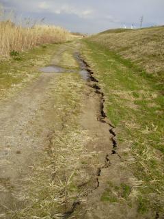 Tone_earthquake03.jpg