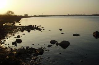 kioroshi_Feb05.jpg
