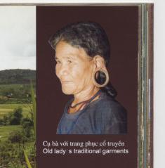 ベトナム耳飾り
