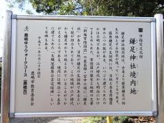 鎌足R0021749