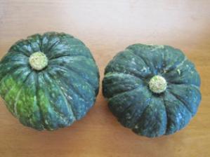 おかず(自家製かぼちゃのニョッキトマトソース)3