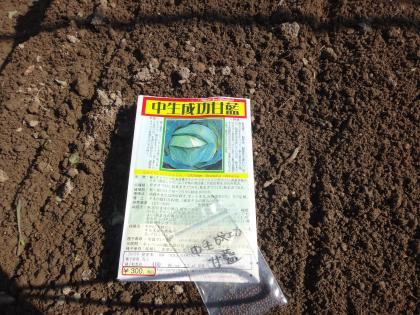DSC00685_convert_20131114195651.jpg